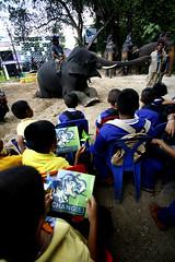 Chang(e) Caravan Begins    (Greenpeace Southeast Asia   Philippines) Tags: elephants obama worldleaders unfccc asiaticelephants thaielephants        elephantsincaptivity   uncopenhagenclimatesummit