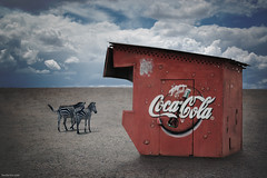 Capitalism is Everywhere (Ben Heine) Tags: africa 2 two sky favorite usa money texture grass contrast america logo couple commerce desert cloudy drink kenya walk surrealism duo horizon flock business company hut management together rainy deux zebra buy species cocacola capitalism enterprise bourse brand ensemble herd extinction argent thirsty everywhere cabane nationalgeographic littlehouse boisson soif marque paire marcher troupeau maisonette financialcrisis acheter benheine incongruit onceuponatimeinkenya