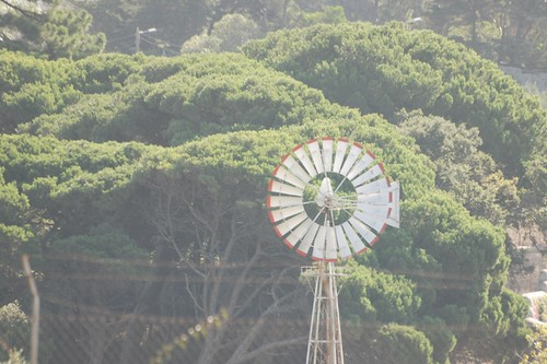 Quinta do Pinheiro 003
