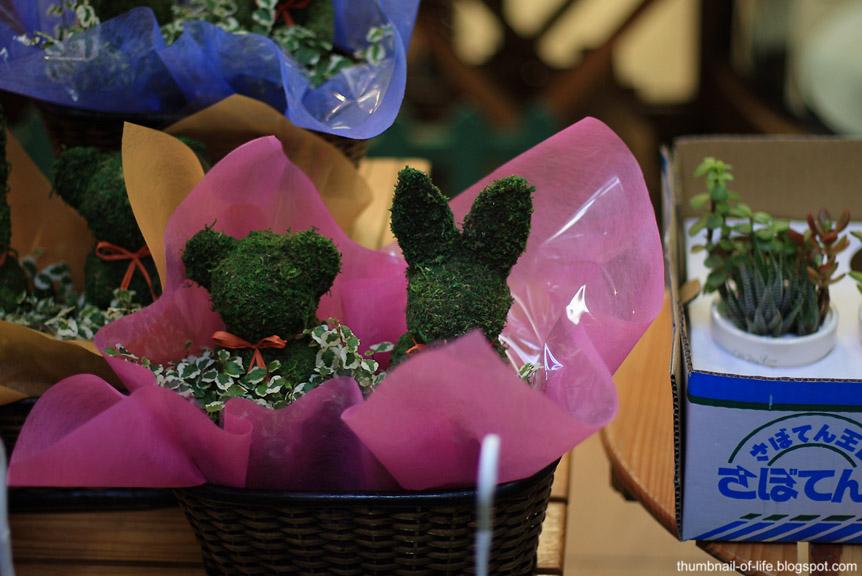 Sankaku Flower