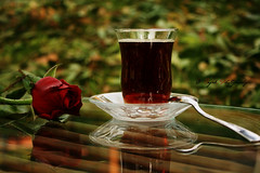 Yreime Ektim Seni (aFaK) Tags: reflection rose tea gl ay yansma