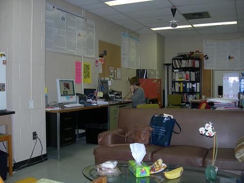My lab