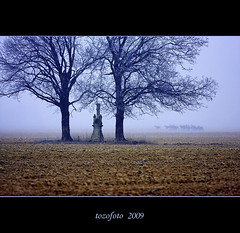 (tozofoto) Tags: trees winter wild sculpture mist nature colors statue fog canon landscape lights hungary wildlife deer gmt zala topseven anawesomeshot theunforgettablepictures tozofoto artofimages saariysqualitypictures superstarthebest updatecollection bestcapturesaoi yourwonderland coth5 obramaestra elitegalleryaoi theoriginalgoldsea