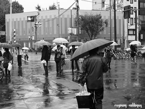 GXR_Tsukiji_23 (by euyoung)