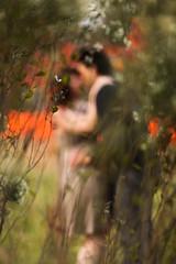 EngagementDanielMegan-0011