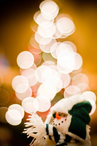 Bokeh Season by C. Strife, on Flickr