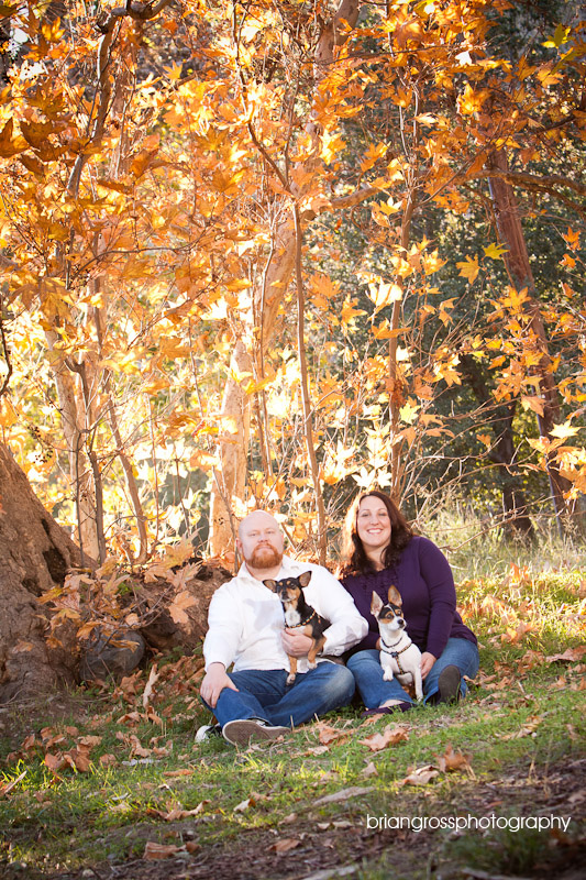 brian_gross_photography bay_area_wedding_photographer engagement_session livermore_ca 2009 (11)