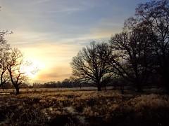"Winter walk (nz_willowherb) Tags: winter fog see scotland frost tour freezing visit tourist tay inversion loch visitor killin to"" ""go visitkillin seekillin gotokillin"