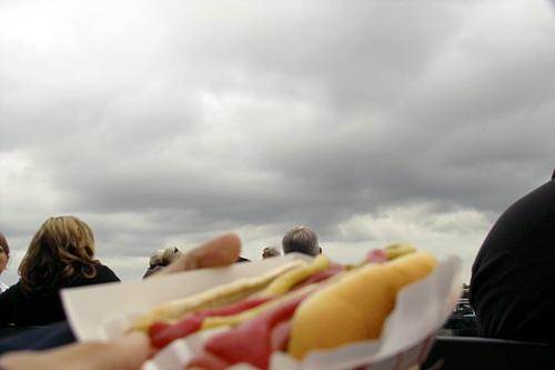horse-hot-dog