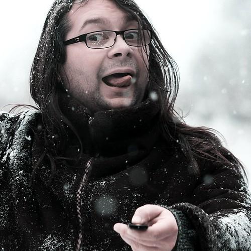 Die Schneefee : Ein Wintermärchen