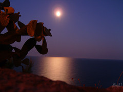 Salento Mare (salento81) Tags: night mare luna salento notte