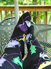 Put Your Feet Up! (BKHagar *Kim*) Tags: cats feet socks foot sock kitty kitties fz50 panasoniclumix bkhagar