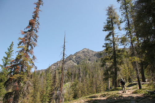 Iron Peak trail