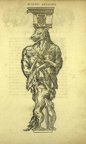 008-lobo-Joseph Boillot 1592
