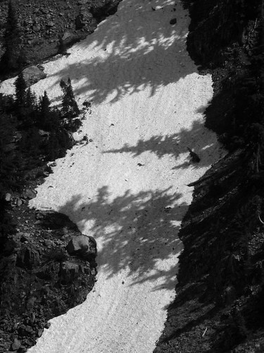 Snowfield Shadows BW