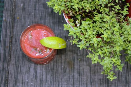 Refreshing Watermelon Cocktail 2