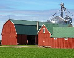 Working barns (Larry the Biker) Tags: red summer green barn rural michigan farm country farming barns silo ag silos agriculture redbarn berlintownship