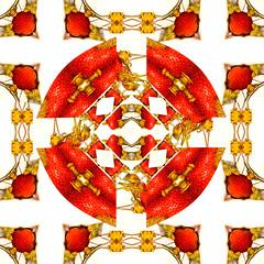 caleidoscopio II (Evelyn Marín) Tags: abstract color art photography photo strawberry kaleidoscope abstracto caleidoscopio fresas