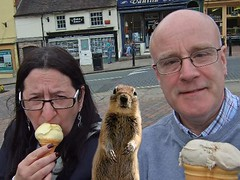 A tribute to that Cheeky Squirrel Photo Crasher (Leo Reynolds) Tags: squirrel 0sec hpexif webthing xratio43x xleol30x