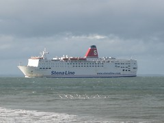 Stena Europe (Skellig2008) Tags: ireland sea birds europa ship august funnel stenaline stenaeurope rosslareharbour