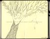 072309 Dryad (renmeleon) Tags: tree art moleskine leaves illustration pen ink paper design leaf drawing spirit earth journal sketchbook ria seaton dryad journaling renmeleon renfolio