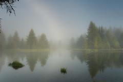 Schwabacher's Landing fog at Grand Teton National Park (Judy Rushing) Tags: fog grandtetonnationalpark nikond200 schwabacherslanding flickrchallengegroup flickrchallengewinner thestorybookchallengegroup storybookwinner grandtetonsyellowstoneschwabacherslanding pregamewinner pregamesweepwinner storybookttwwinner