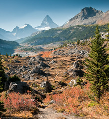 Trail to Mount Assiniboine (Marc Shandro) Tags: autumn red orange canada mountains fall nature colors bright hiking path britishcolumbia bluesky trail alpine backpacking northamerica wilderness mtassiniboine absolutelystunningscapes