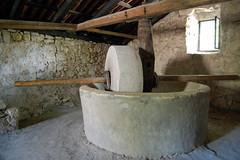 Trsteno Arborétum, Dubrovnik
