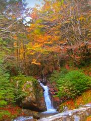 Pirineos - Pyrenees