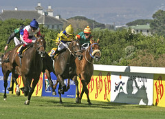 J&B Met 2007 - Cape Town, South Africa (South African Tourism) Tags: southafrica capetown horseracing 2007 westerncape jbmet southafricantourism jbmet2007