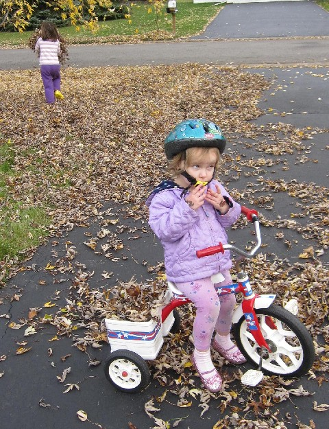 Toddler Leaf Removal: At Your Service