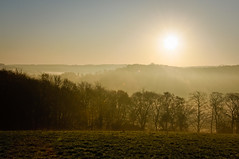 Near Autumns End - Holme Valley (GaryJS ™) Tags: november trees mist west grass misty fog sunrise nikon yorkshire dew valley 2009 holmfirth holme d90 kirklees netherthong 18105mm thongsbridge adriënnesmagicalmoments wwwgaryjsphotographycouk