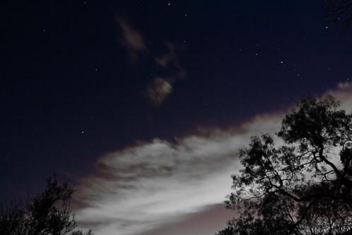 Night Sky - 172/365 -27 November 2009