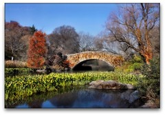 Central Park NYC (Ronaldo F Cabuhat) Tags: travel vacation reflection canon photography picture photograph hdr graden tiltshift centralparknyc autumninnewyork canonefs1755mmf28isusm centralparknewyorkcity canoneos50d cabuhat