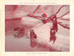 zoorelief p11
