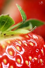 Strawberry Hair (Senzio Peci) Tags: red italy food color verde green nature yellow fruit hair strawberry italia colore natura giallo sicily rosso frutta cibo sicilia paterno fragola capelli intothedeepofmysoul