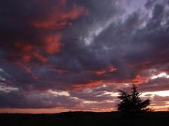 Red Clouds At Sunset (Clyde Barrett) Tags: sunset red sky cloud newfoundland dusk nl nfld clydebarrett vosplusbellesphotos spectacularsunsetsandsunrises