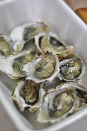 Oysters, shucked
