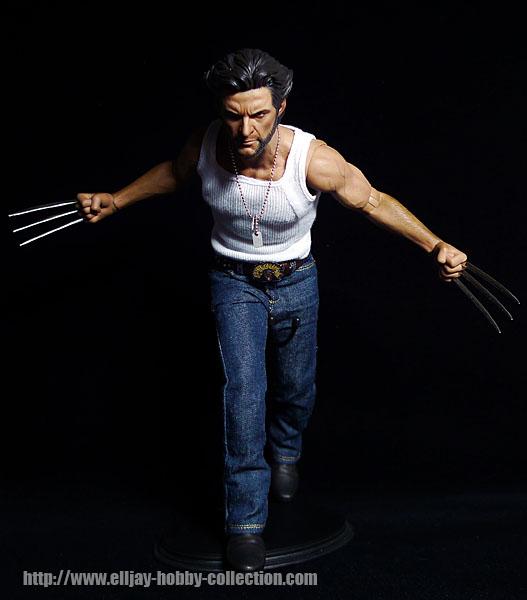 Wolverine (15)