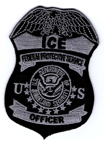 Federal Protective Service Subdued Badge (Old Style)