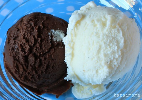 Vanilla and Chocolate Ice Cream, Philadelphia-Style