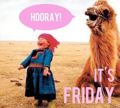 camel-hooray