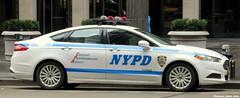 NYPD (Francis Lenn) Tags: nypd police newyork novayork nuevayork policia policía usa eua eeuu
