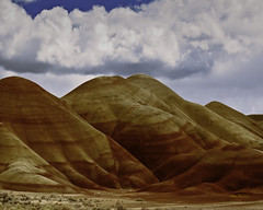 The Oregon painted hills (Hans Franchesco) Tags: paintedhills oregon johndayfossilbedsnationalmonument highdesert centraloregon red green yellow white purple black clouds bluesky hill hills clay rock rocks sevenwondersoforegon alien alienlandscape landscape strangelandscape remote mitcheloregon quiet peaceful fossil fossils desert lignite mudstone siltstone shale laterite horsefossils camelfossils rhinocerosfossils rhinofossils wheelercounty