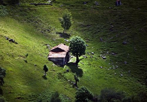 Shepherd's hut #1