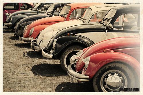 Bug Jam 2009 (33)