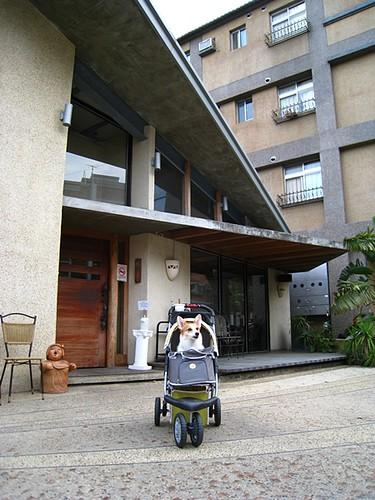 你拍攝的 200907宜蘭1 (38)。