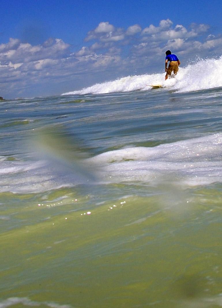 surferwave_0084