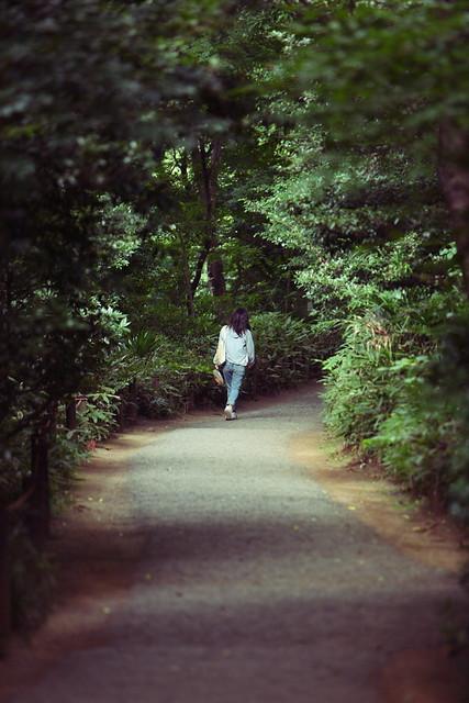 静かな小道