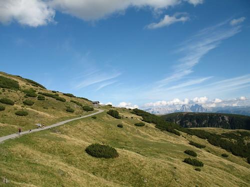 Der Panoramaweg in Richtung Gedrumalm mit den Grödner Dolomiten im Hintergrund